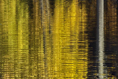 Photograph - Colors Of Fall 05 by Jim Dollar