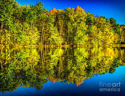 Photograph - Colors Of Fall At Bushkill by Nick Zelinsky