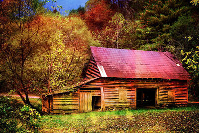 Photograph - Colors Of Fall by Debra and Dave Vanderlaan