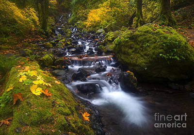 Waterfall Photograph - Colors Of Fall by Mike Dawson