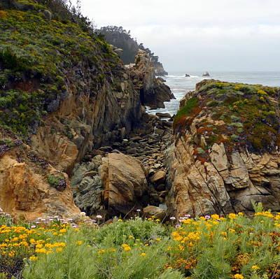 Photograph - Colors Of Point Lobos by Carla Parris