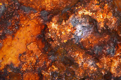 Photograph - Colors Of Rust 1 by Richard Ortolano