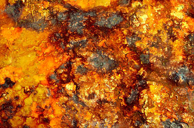 Photograph - Colors Of Rust 3 by Richard Ortolano