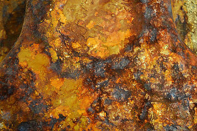 Photograph - Colors Of Rust 4 by Richard Ortolano