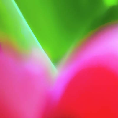 Photograph - Colors Of Spring Abstract Triptych Section 1 by Menega Sabidussi