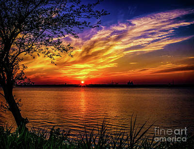 Photograph - Colors Of Sunset by Nick Zelinsky