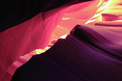 Photograph - Colors Of The Canyon by Roupen  Baker