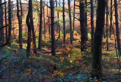 Colors Of The Forest Original by Lori Deiter