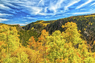 Photograph - Colors Of The Gorge by Gestalt Imagery