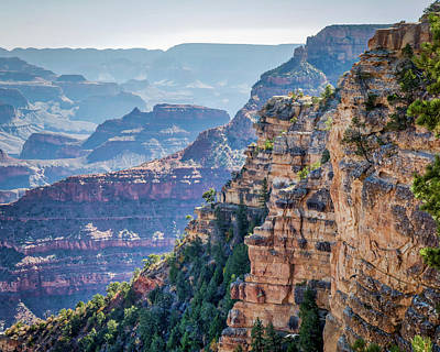 Photograph - Colors Of The Grand Canyon by Joe Myeress
