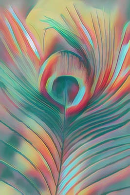 Photograph - Colors Of The Rainbow Peacock Feather by Debra and Dave Vanderlaan