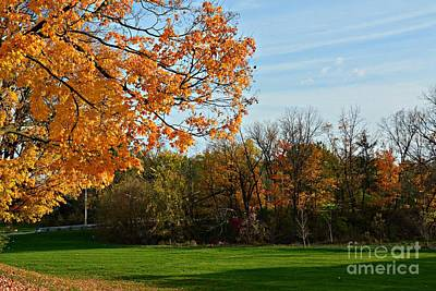 Photograph - Colors Of The Season by Amanda Kessel
