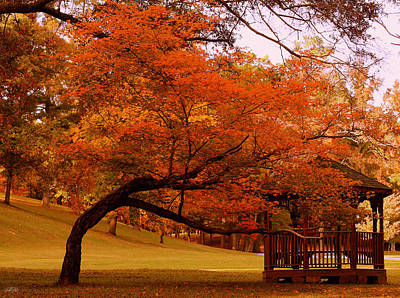 Berry College Photograph - Colors Of The Season by Jason Blalock