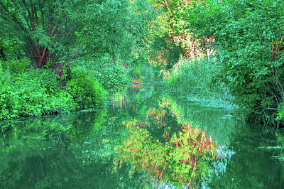 Photograph - Colors Of The Spreewald by Sun Travels