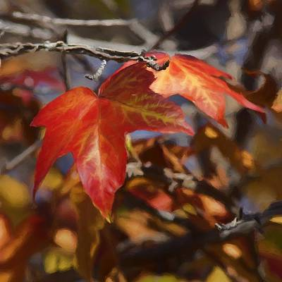 Digital Art - Colors Of The Sycamore by Ernie Echols