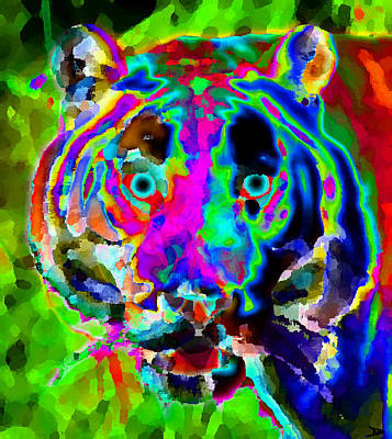 Colors Of The Tiger Art Print