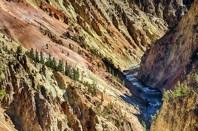 Photograph - Colors Of Yellowstone Canyon by Shirley Mitchell