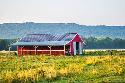 Photograph - Colors On The Farm by Shelby Young
