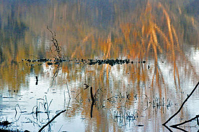 Photograph - Watercolor Pond by Kay Lovingood