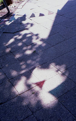 Photograph - Colors On The Shadows by Nacho Vega