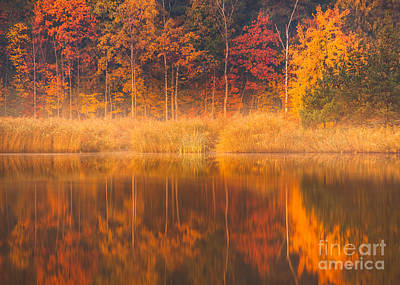 Photograph - Colors by Pawel Klarecki