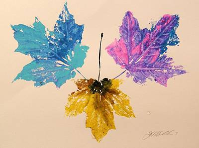 Maple Leaf Art Drawing - Colors You Might Miss by John Williams