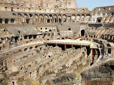 Photograph - Colosseum Rome Italy by Edward Fielding