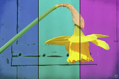 Digital Art - Colour Blocking Spring by Lisa Knechtel