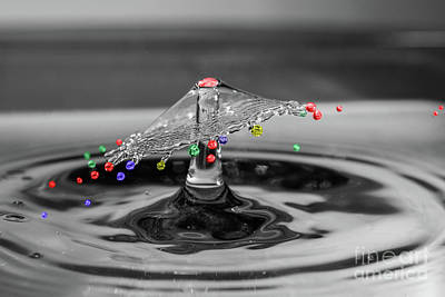Photograph - Colour Drops by Steve Purnell