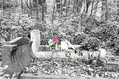 Photograph - Colour In The Cemetery by Colin Rayner
