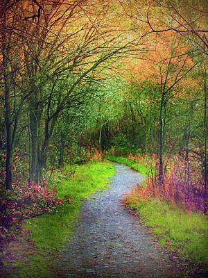 Photograph - Colour Mysteries by Tara Turner