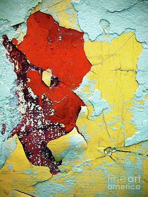 Photograph - Colour Wars by Tara Turner