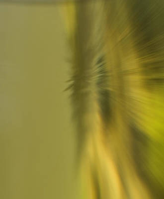 Photograph - Coloured Blur by Cliff Norton
