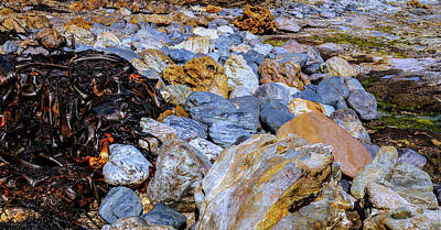 Photograph - Seaweed And Rocks Trial Harbour #2 by Lexa Harpell