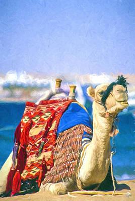 Dromedary Digital Art - Colourful Camel by Roy Pedersen
