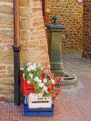Photograph - Colourful Distraction Paciano by Dorothy Berry-Lound