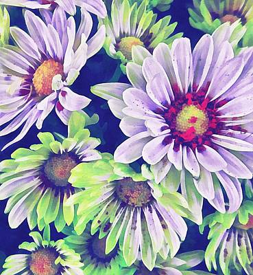 Photograph - Colourful Floral 3 by Dorothy Berry-Lound