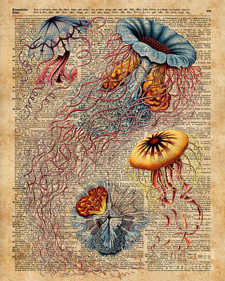 Tapestries - Textiles Mixed Media - Colourful Jellyfish Marine Animals Illustration Vintage Dictionary Book Page,discomedusae by Jacob Kuch