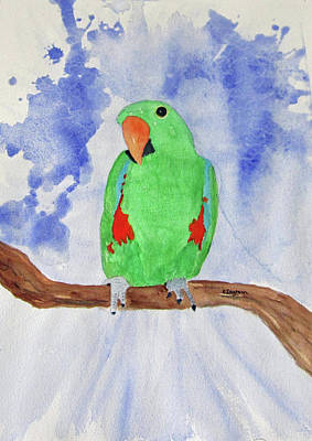 Painting - Female Parrot by Elvira Ingram