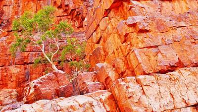 Colours Of Ormiston Gorge, Northern Territory Art Print