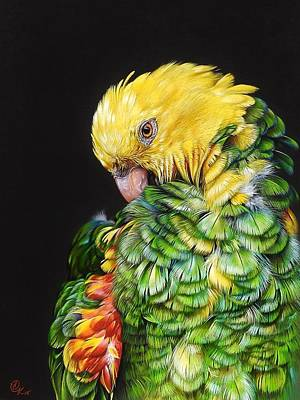 Drawing - Colours Of The Jungle - Yellow-headed Amazon by Elena Kolotusha
