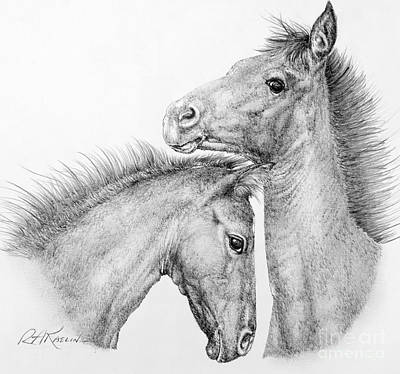 Wild Horses Drawing - Coltish Characters by Roy Anthony Kaelin