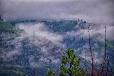 Photograph - Columbia Gorge Mist by Bill Posner