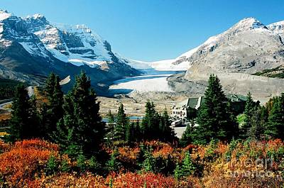 Photograph - Columbia Icefield by Frank Townsley