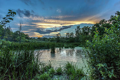 Photograph - Columbia Marsh Sunset by Lon Dittrick