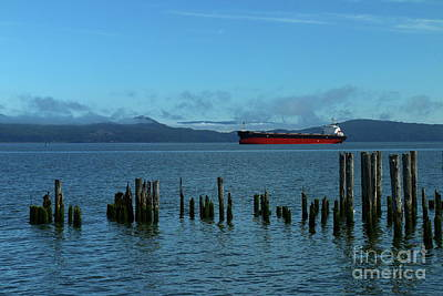 Photograph - Columbia River Scene by Christiane Schulze Art And Photography
