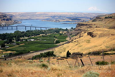 Photograph - Columbia River Vista by Carol Groenen