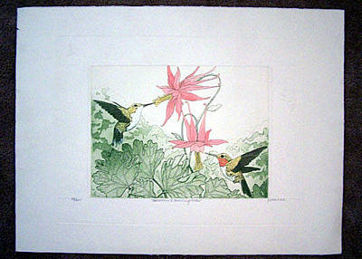 Judith Hall Painting - Columbine And Hummingbirds by Judith Hall