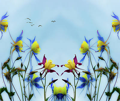 Photograph - Columbine Blossoms And Birds by Peter V Quenter