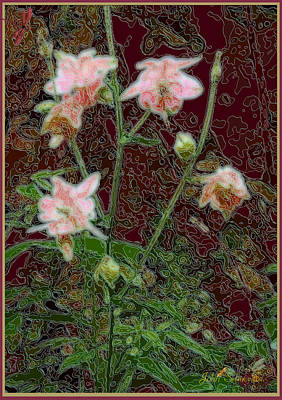 Digital Art - Columbine by John Selmer Sr